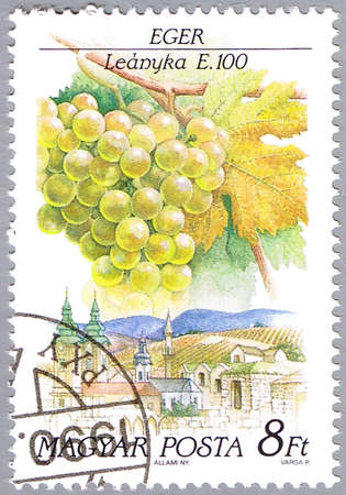 HUNGARY - CIRCA 1990: A stamp printed in Hungary shows Leanyka, series is devoted to grapes, circa 1990