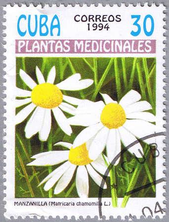 german chamomile: CUBA - CIRCA 1994: A stamp printed in Cuba shows Matricaria chamomilla or German chamomile, series is devoted to medicinal plants, circa 1994 Editorial