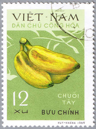 VIETNAM - CIRCA 1969: A stamp printed in Vietnam shows Bananas, series is devoted to fruits, circa 1969 Stock Photo - 12256321