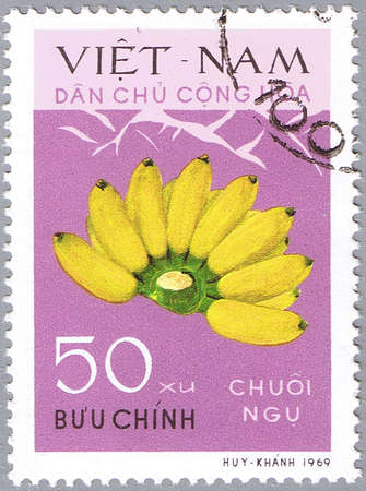 VIETNAM - CIRCA 1969: A stamp printed in Vietnam shows Bananas, series is devoted to fruits, circa 1969 Stock Photo - 12256320