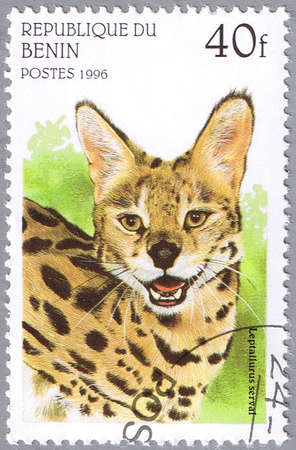 BENIN - CIRCA 1996: A stamp printed in Benin shows Leptailurus serval or serval, series, circa 1996