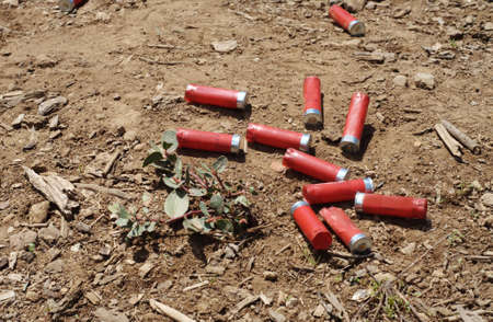 spent: Spent shells Stock Photo