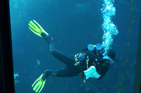 Underwater Diver Cleaning