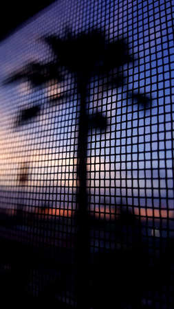 View from hotel room with window screen