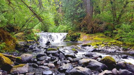 Hiking stream