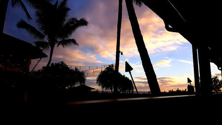 each sunset silhouette Stok Fotoğraf