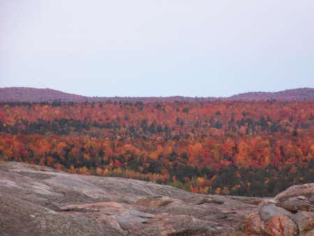 marquette: Fall colors