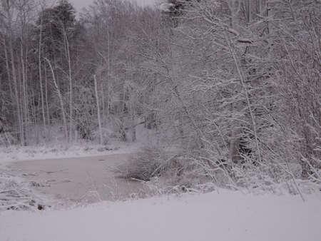 blasted: Snow blasted Stock Photo