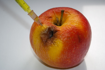 Rotten apple as a concept of aging proces photo