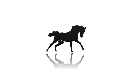 Horse icon on white