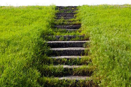 bajando escaleras: Piedra vieja strairs en hierba en la pequeña colina Foto de archivo