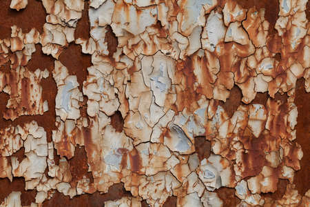 surface: metal door damaged by rust, note shallow depth of field Stock Photo