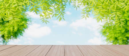Spring beautiful blurred green tree in the park background with empty copy space on the wooden table for product display mockup 3d render 3d illustration 免版税图像