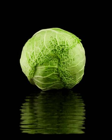 Cabbage head isolated on black with ripple reflection