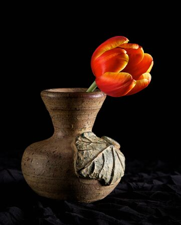 vase: A short stemmed tulip in a clay vase lit dramatically Stock Photo