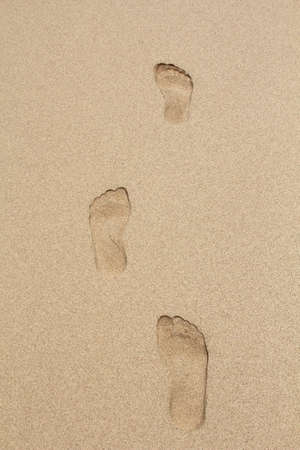 footmark: footprints in the sand