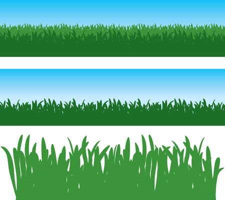 Green Grass Vector Vector