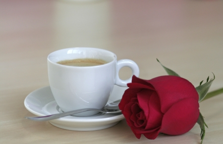 Coffee and red rose