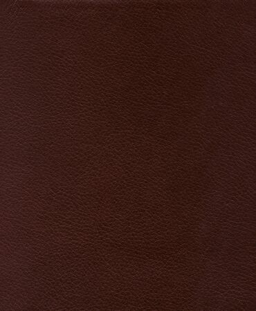 Authentic leather texture � background
