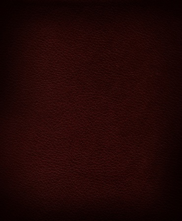 nature photography: Authentic leather texture – background