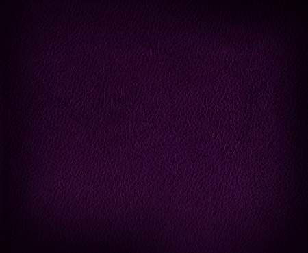 Authentic leather texture – background