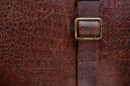 Vintage crocodile leather textured background with buckle