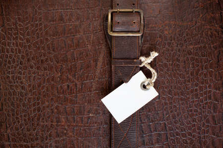 Vintage texture in pelle di coccodrillo con sfondo bianco prezzo tag Archivio Fotografico