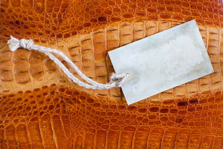 Crocodile leather texture background with old paper price tag photo
