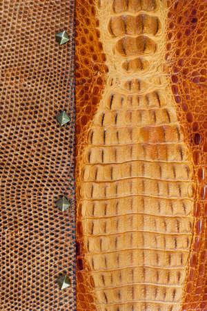 Crocodile leather texture background photo