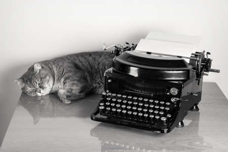 writers: British sorthair cat and vintage old typewriter on table desaturated photo