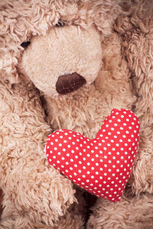 toy bear: Valentine heart with toy bear Stock Photo