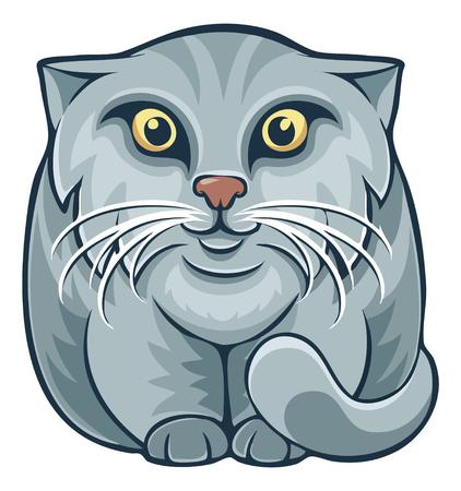 Dibujos animados de gato Manul Pallas