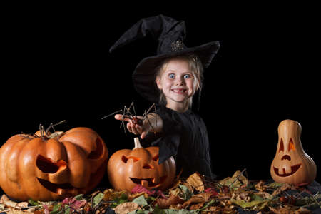 enthusiastically: Little witch enthusiastically holding a spider. Surrounded scary pumpkins and leaves on a black background