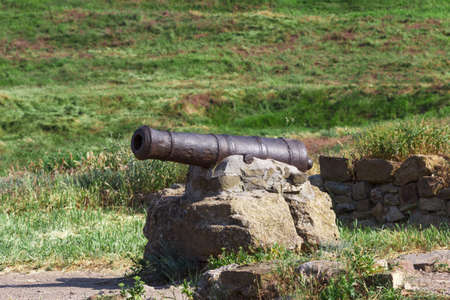 nuclei: Rusty old cannon to fire nuclei. Steady fixation of the fortress