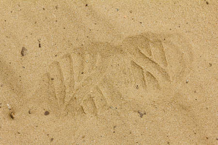 boot print: Boot print in the sand. Trail shoes closeup