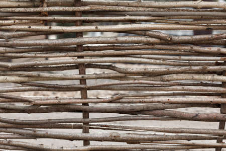 poling: Lath fence of twigs wooden texture closeup