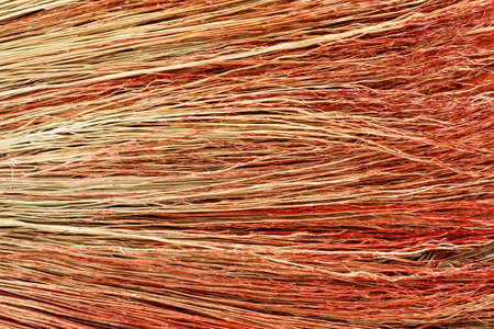 straw twig: Background broom stems closeup studio shot. Abstract background