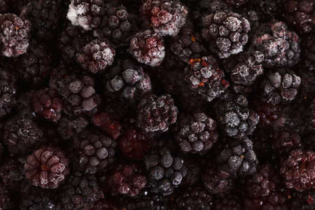 close up food: Close up view on frozen Blackberry fruits, food background