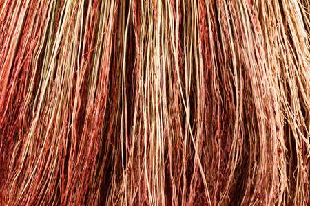 gefesselt: Background broom stems closeup studio shot. Abstract background