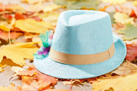 Octoberfest picnic on natural background with tyrolean hat and autumn yellow leaves Stock Photo