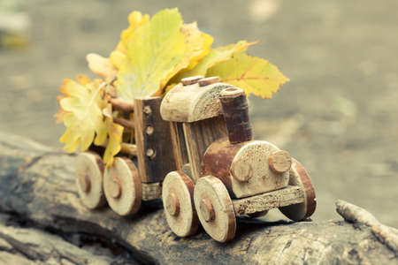 Colorful foliage background and a toy train. Fall October or November. Brightly colored maple leaves during autumn in park. Stock Photo