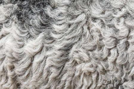 Dark sheep skin background close up texture abstract