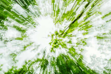 Abstract green eco, ecology background of tree. Zoom speed blured motion. Created by zooming out. Stok Fotoğraf
