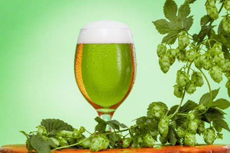 Pint of beer with ingredients for homemade beer on green background.