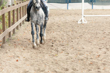 Learning Horseback Riding. Instructor teaches teen Equestrian sport.