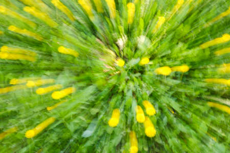 Abstract green nature background of tree in countryside outdoors. Zoom blossom speed blured motion. Created by zooming out.