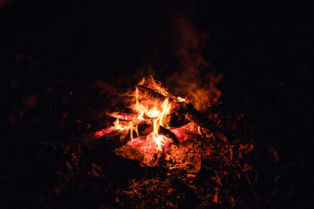bonfire campfire night fire flame burn background. hot light.
