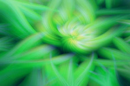 floral fractal background prominence art illustration energy. fantasy.