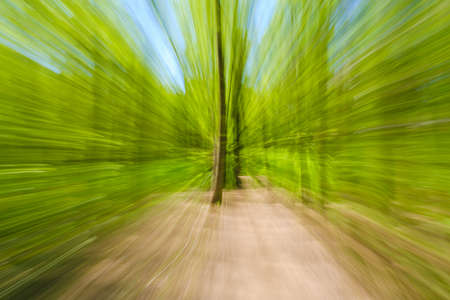 Abstract green background of tree in countryside outdoors. Zoom speed blured motion. Created by zooming out. Stok Fotoğraf - 119537101