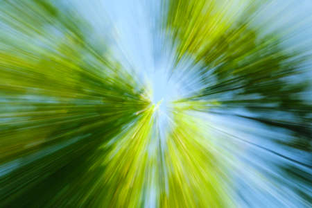 Abstract green background of tree in countryside outdoors. Zoom speed blured motion. Created by zooming out. Banco de Imagens - 119537687
